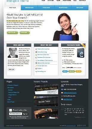 weboldal wordpress template - -profionline.hu