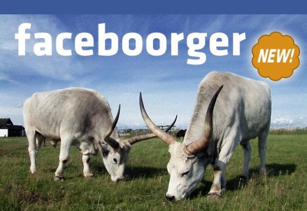 faceboorger