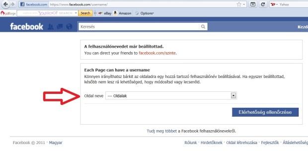 facebook usernames