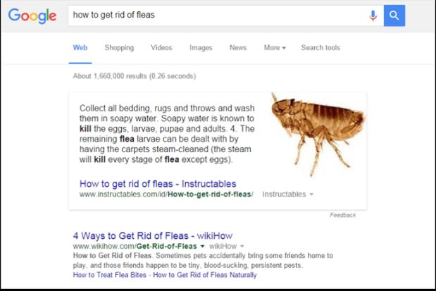 Google SEO gazdag válasz